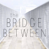 The Bridge Between Exhibition