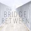 The Bridge Between Exhibition
